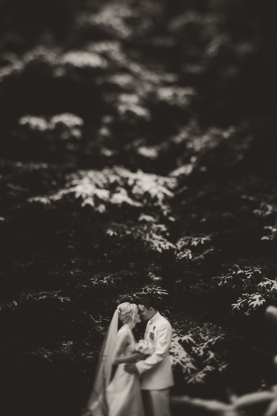 winter weddings, winter wedding photographer, winter weddings ontario, winter wedding peterborough, outdoor winter wedding photographer, ontario wedding photographer, peterborough wedding photographer, toronto wedding photographer, ash nayler photography, ash nayler