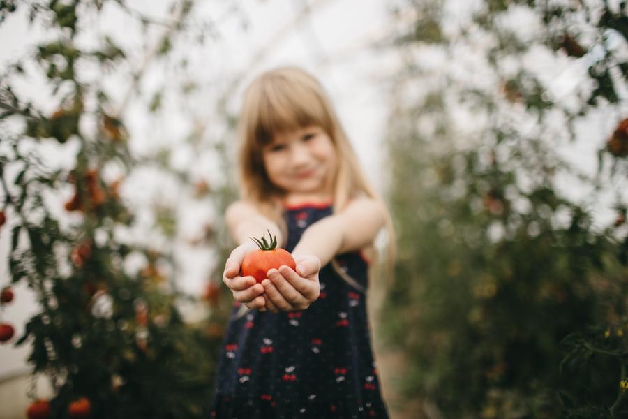organic vegetable peterborough