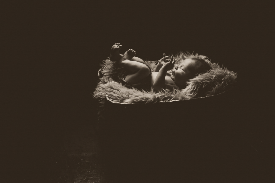 newborn photography peterborough ontario