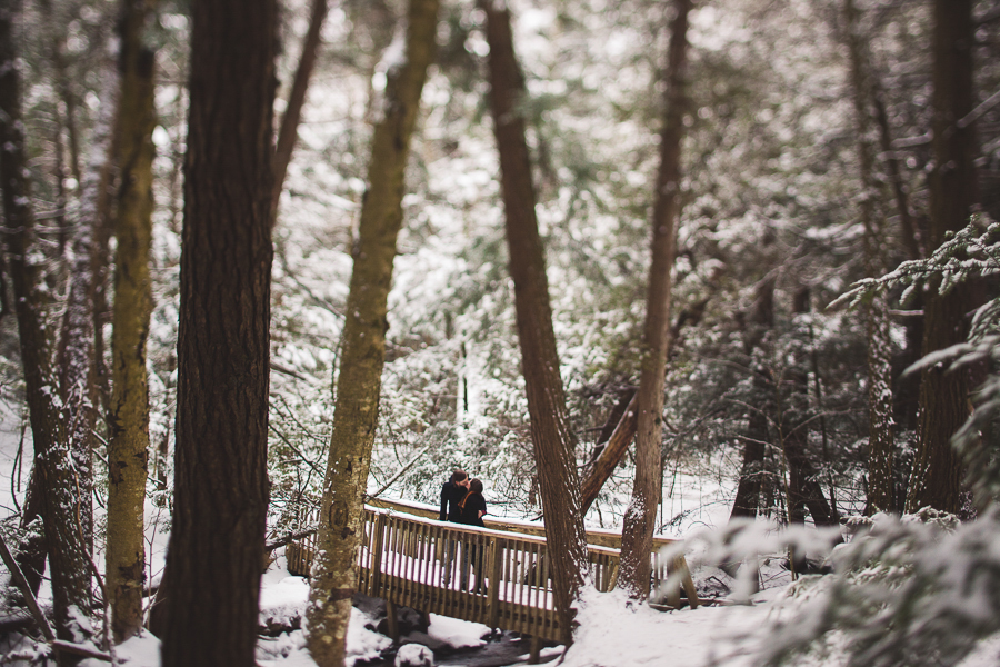 winter engagement photographer ontario