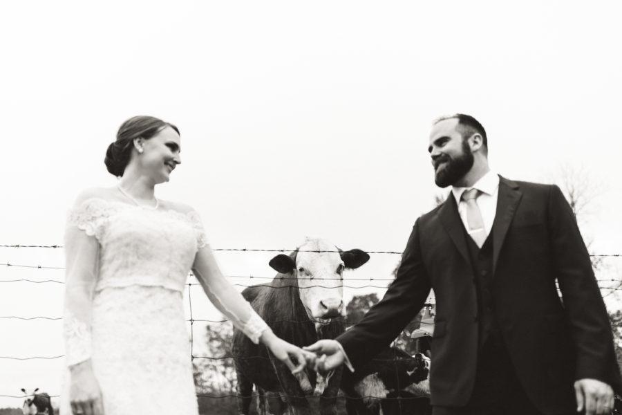 peterborough farm wedding photographer