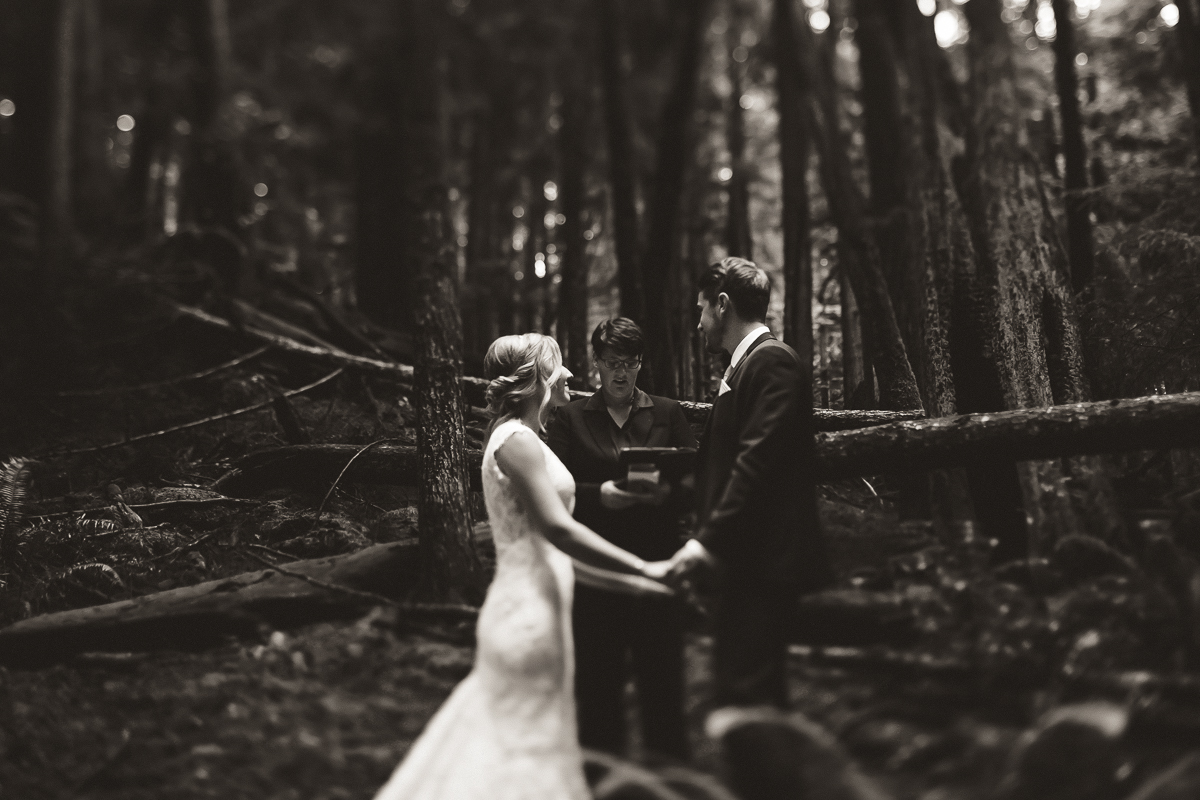 sunshine coast elopement-ceremony in woods