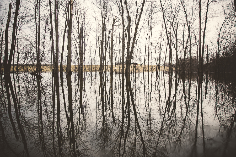 peterborough, spring 2014 flood peterborough ontario, peterborough photographer