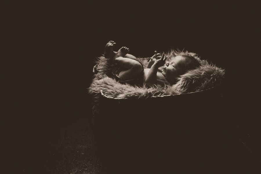 peterborough newborn photographer, lifestyle photography, portrait photographer peterborough, newborn photographer, ontario wedding photographer