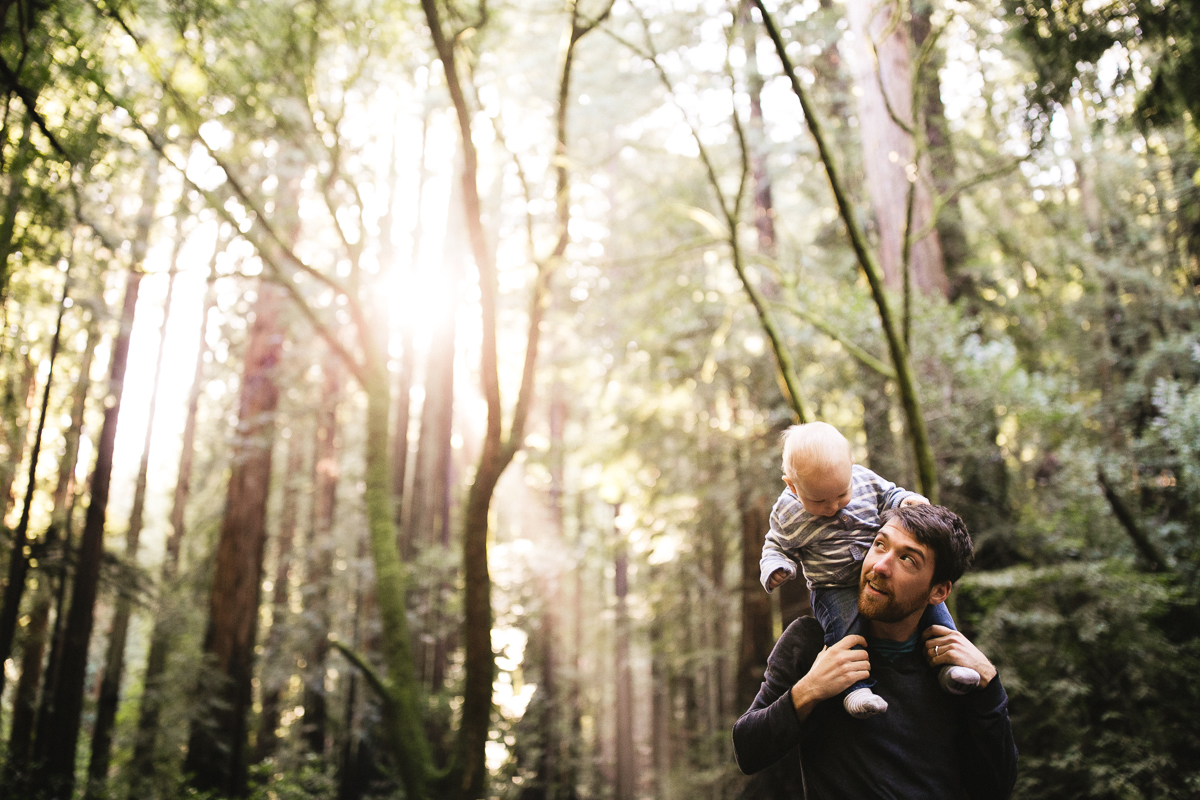 red wood family photographer